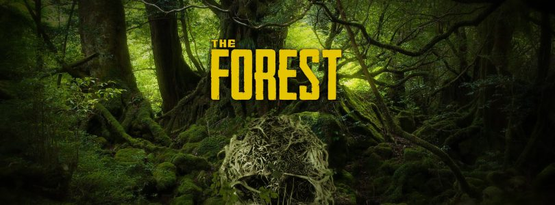 Download THE FOREST